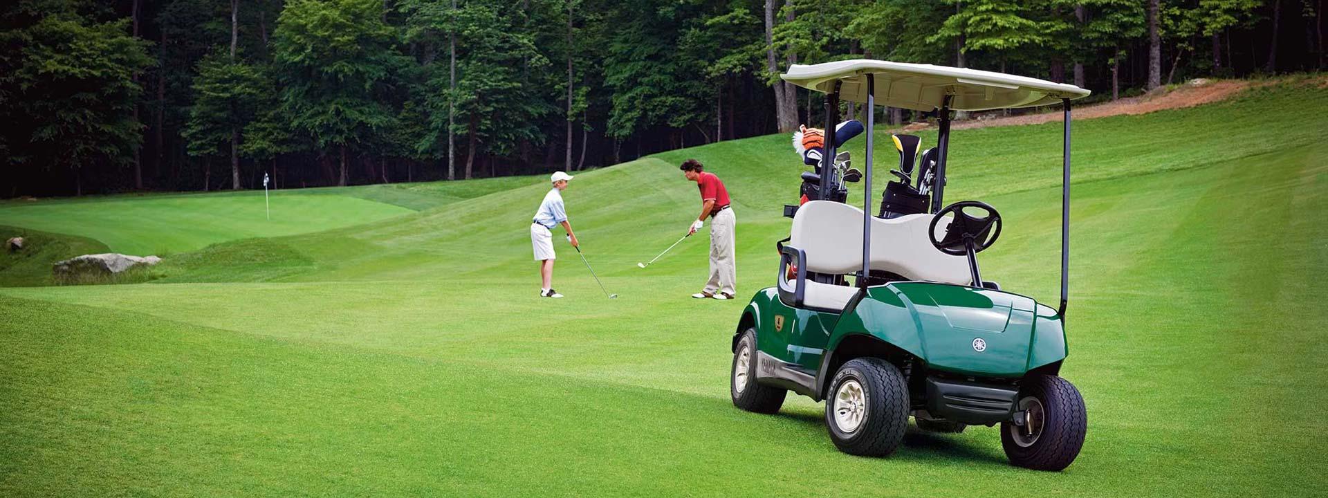 Fairway golf car sales service parts repair long for Narrow golf cart